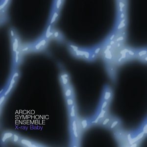 Arcko Symphonic Ensemble - X-Ray Baby, Download